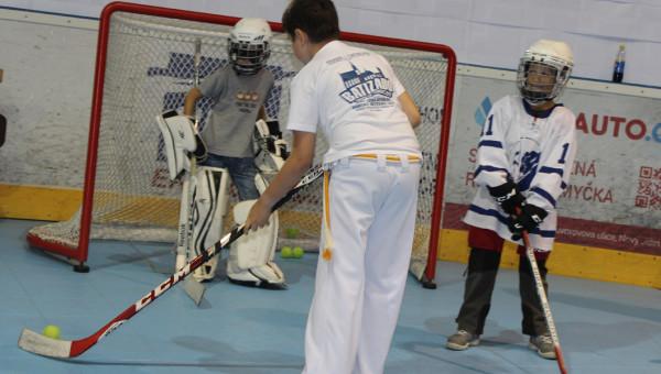 hokej2_proweb